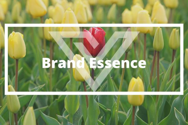 Brand Essence - Vision One Glossary