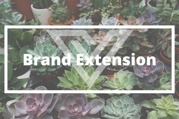 Brand Extension - Vision One Glossary