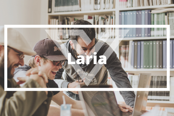 Laria - Vision One Glossary