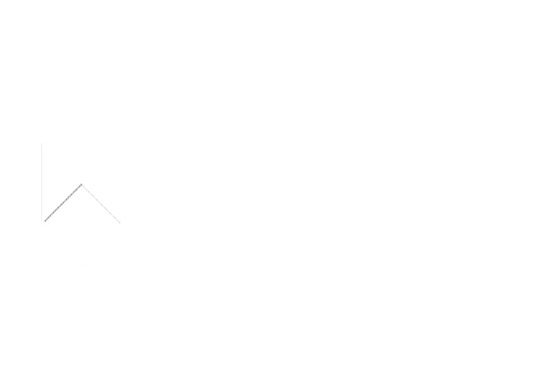 MDIS Vision One