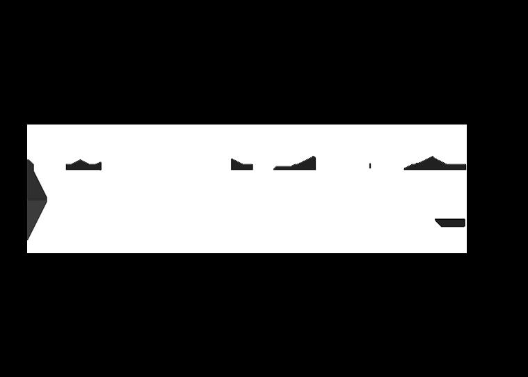 Merseyside Police Vision One