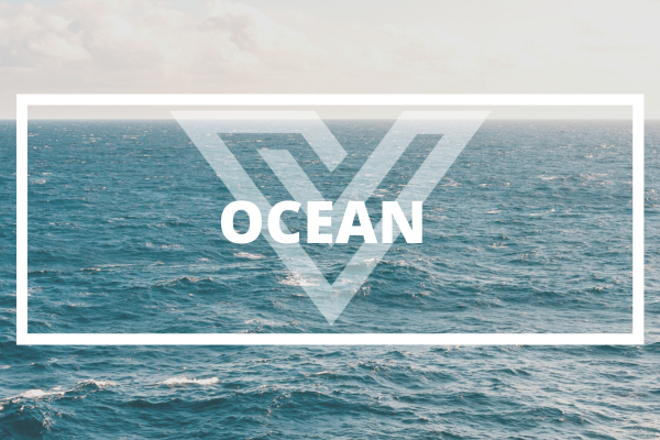 OCEAN - Vision One Glossary