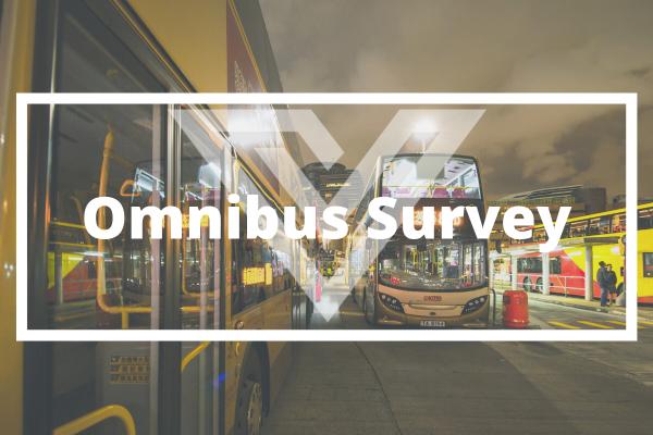 Omnibus Surveys - Vision One Glossary