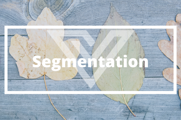 Segmentation - Vision One Glossary