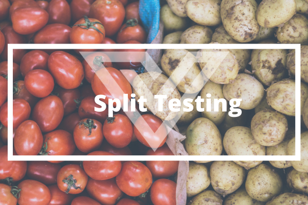 Split Testing - Vision One Glossary