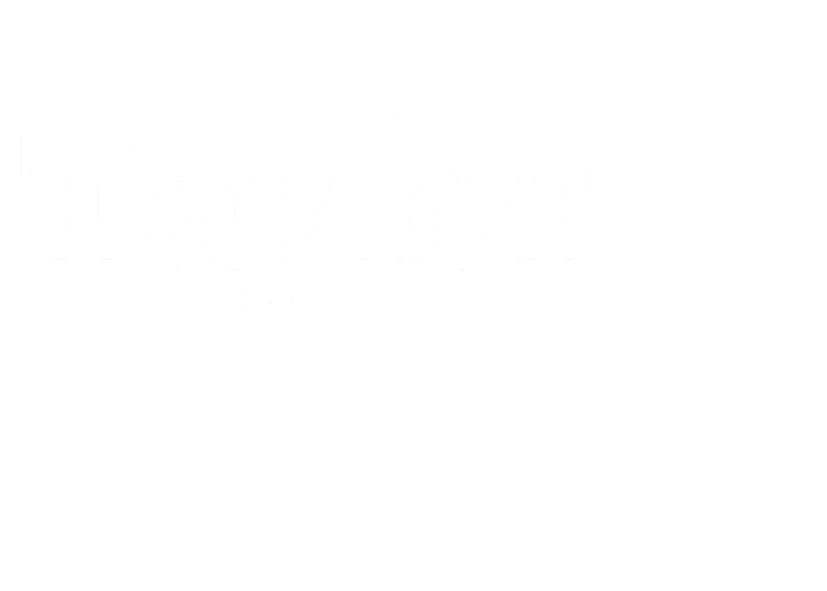 Taylor Wimpey Vision One