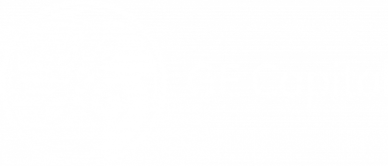 ge capital Vision One